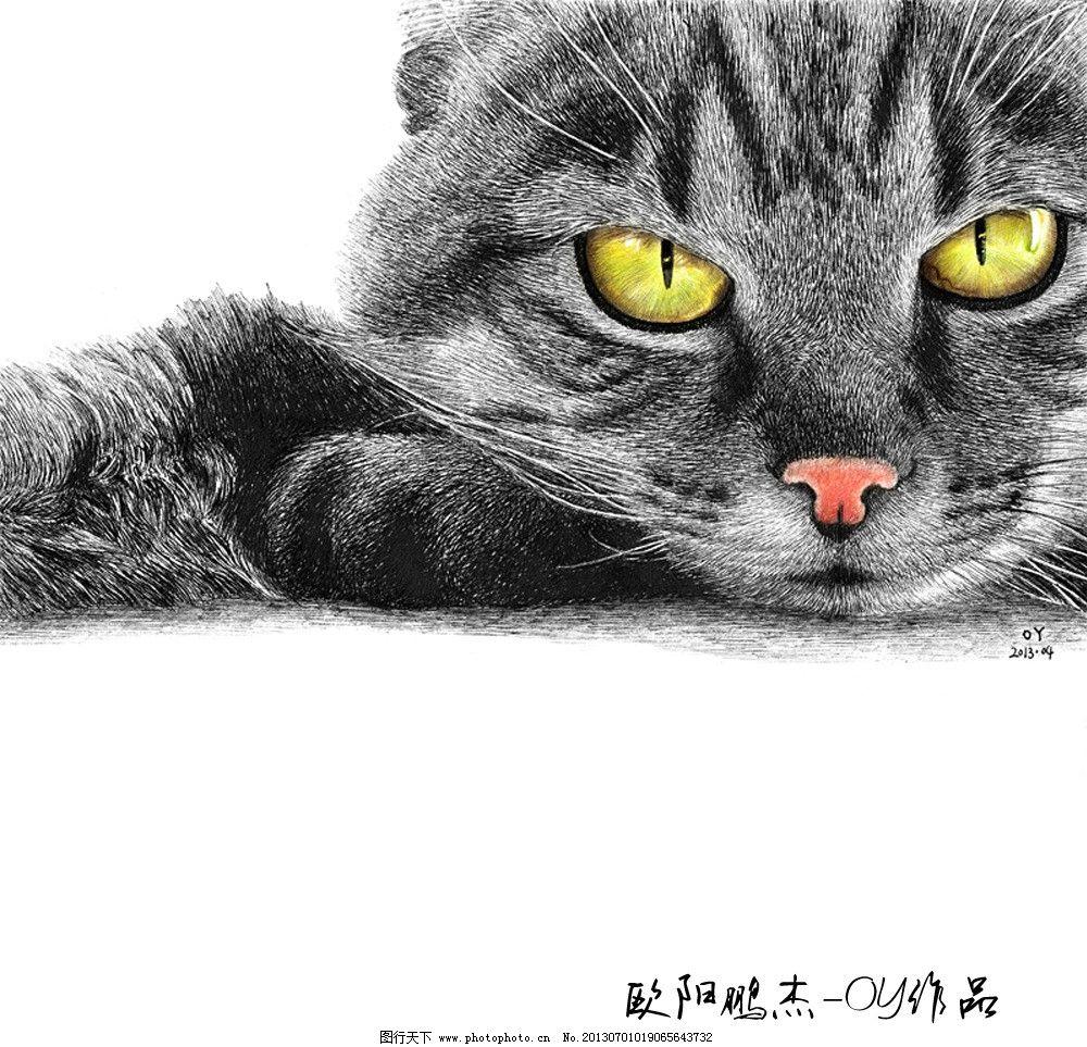 圆珠笔绘画猫 绘画猫 手绘猫 猫眼 黑猫 猫 欧阳鹏杰 oy绘画 绘画书法