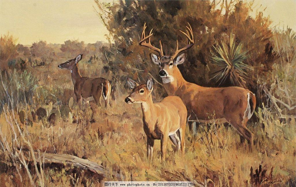 草原鹿 美术 油画 动物画 草原 鹿 植物 树木 油画艺术 油画作品54 绘