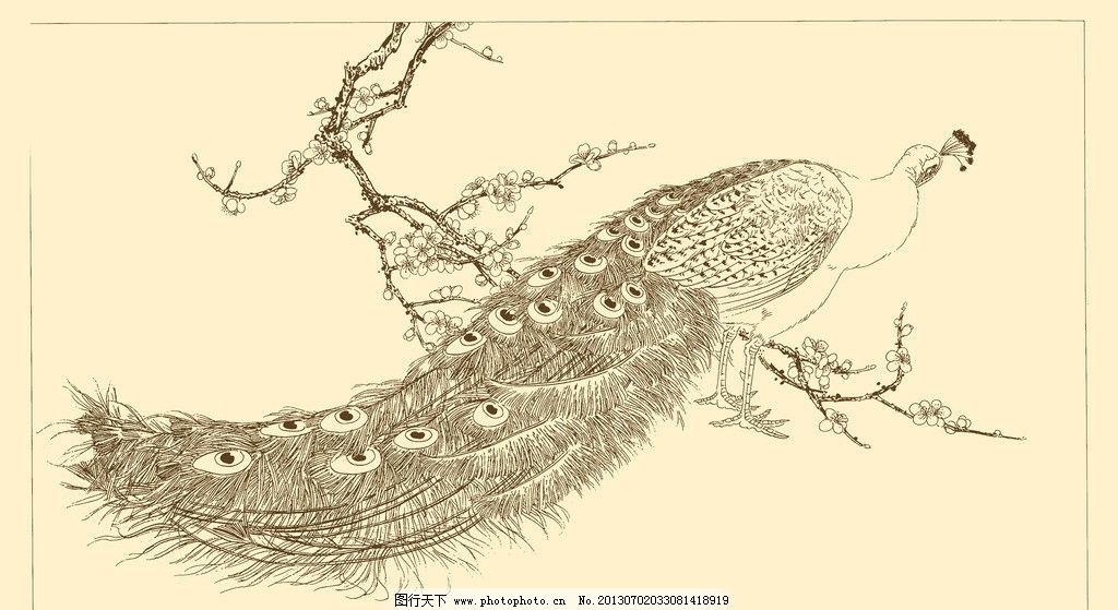 白描孔雀 白描 线描 国画 中国画 孔雀 禽鸟 动物 树枝 栖息 psd分层