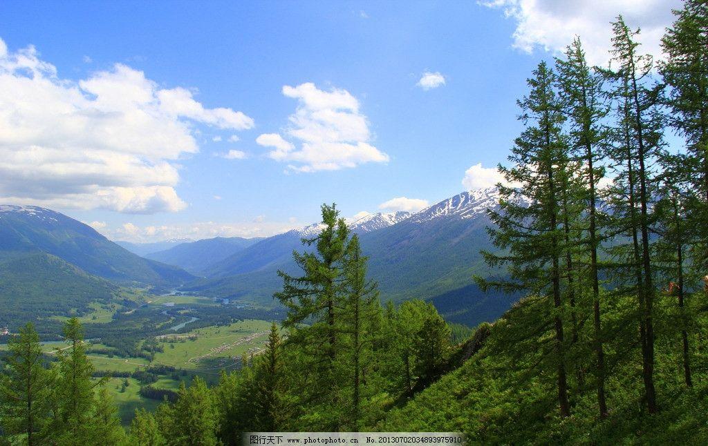 蓝天白云 明媚 山水 绿地 蓝天 森林阳光 树林 森林 白云 喀纳斯 大树