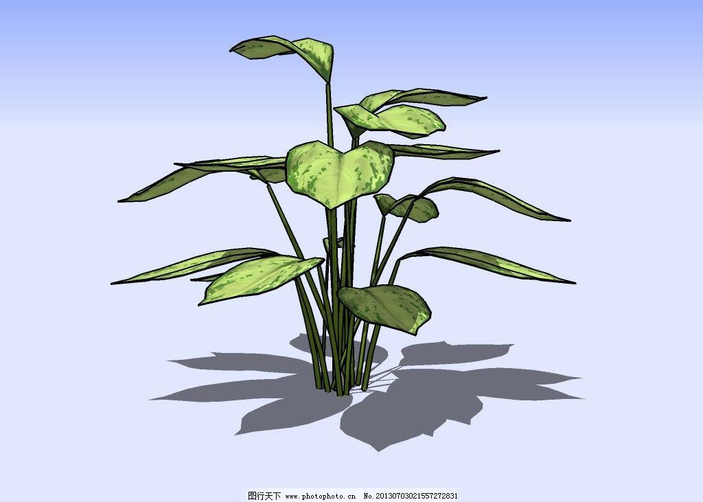 花草3D模型 绿叶 植物 三维 立体 造型 经典 装饰 精模 其他模型