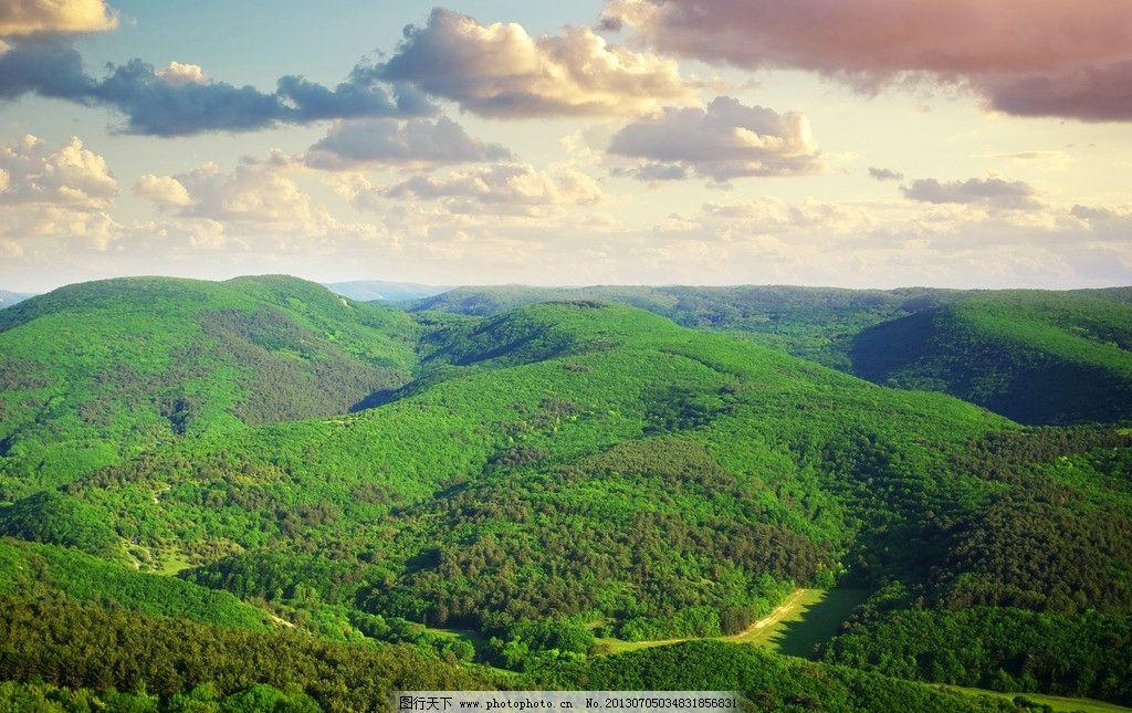 韩国森林魔法牌济州岛马油