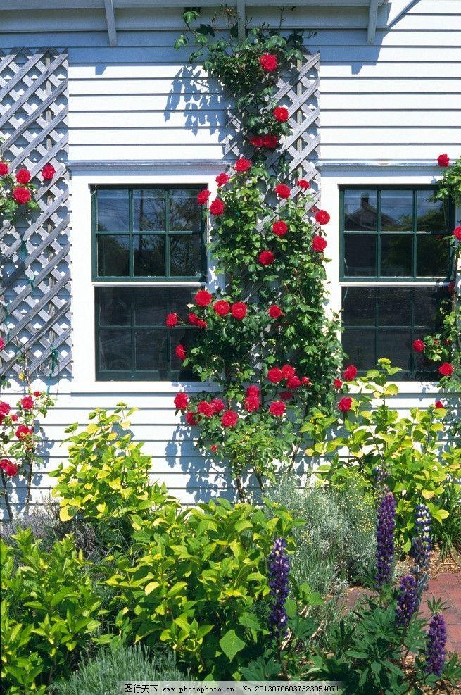 房屋素材图片 房屋 建筑 窗户 门窗 玻璃 地面 水泥 阴影 影子 欧式