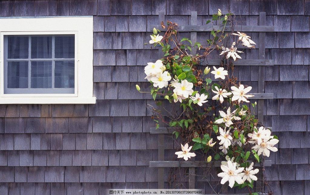 房屋 建筑 窗户 门窗 玻璃 阴影 影子 欧式 国外 园林 花卉 花草 别墅