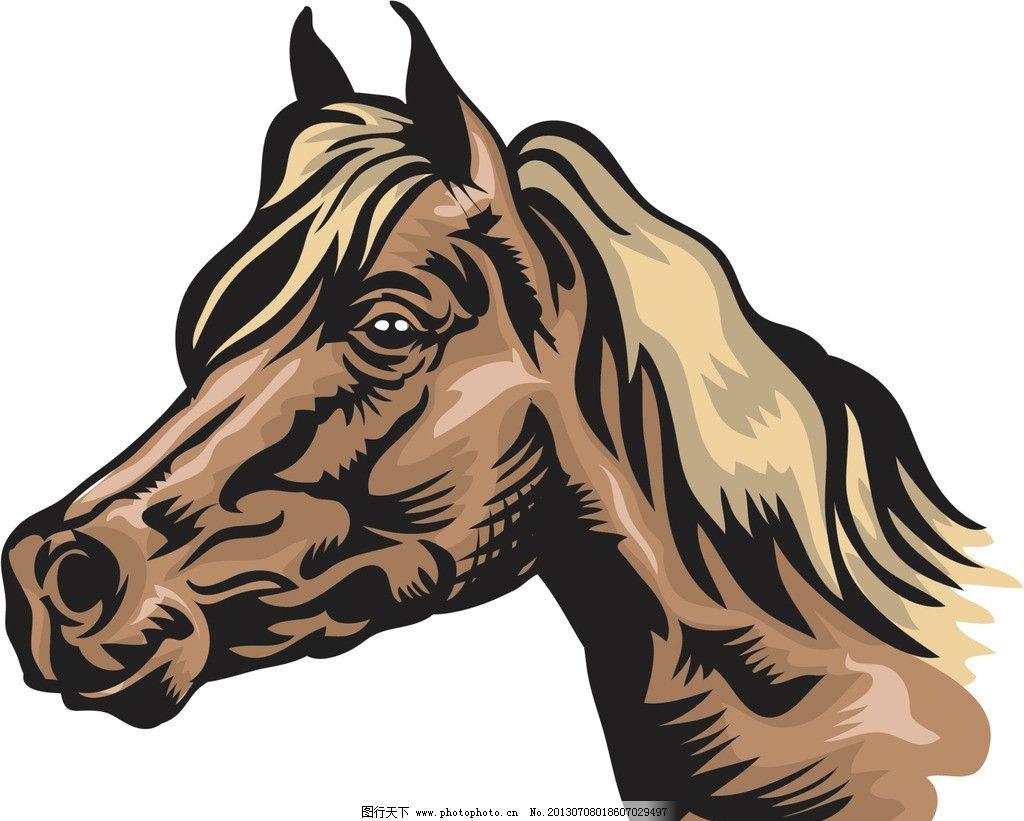 卡通马 卡通 漫画 马 头部 马头 其他 动漫动画 设计 300dpi jpg