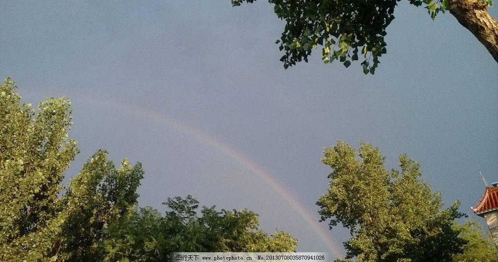 彩虹 树 天空 绿色 淡蓝色 树木树叶 生物世界 摄影 72dpi jpg