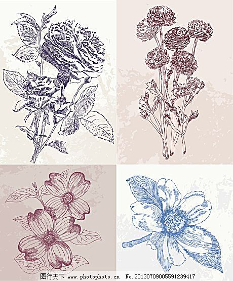 手绘花朵矢量素材免费下载 白描 花 花朵 花纹 手绘 线稿 线条 手绘