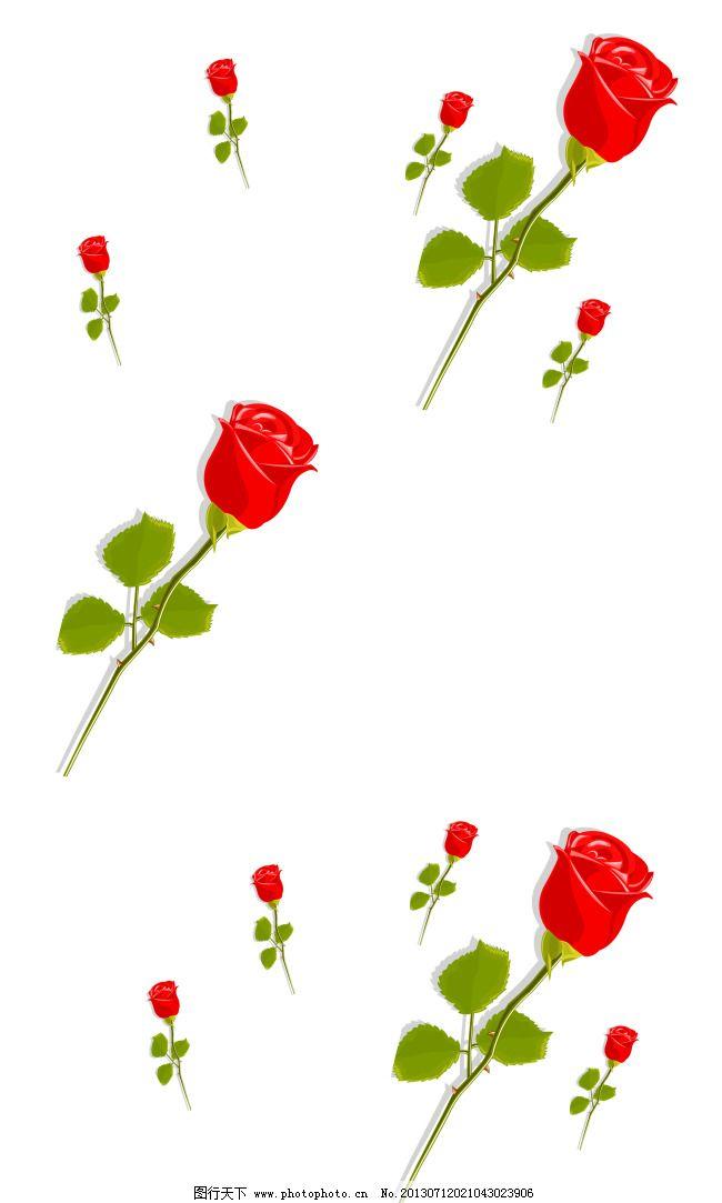 花瓣 绿叶 玫瑰花