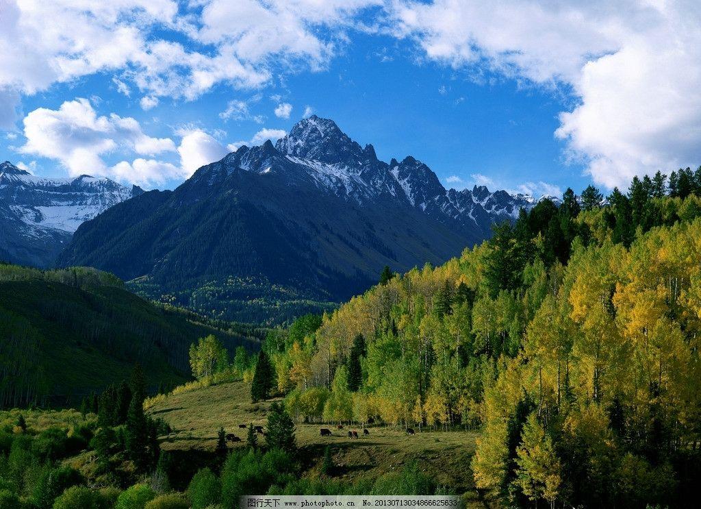 高山 山峰 森林 蓝天 白云 峡谷 田野 草地 自然 风景 风光 景色 景观