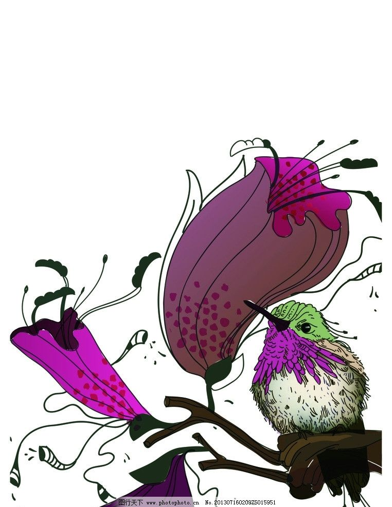 花朵 鸟 鸟类 动物 花纹 花花世界 漂亮 美丽 花纹花边 矢量