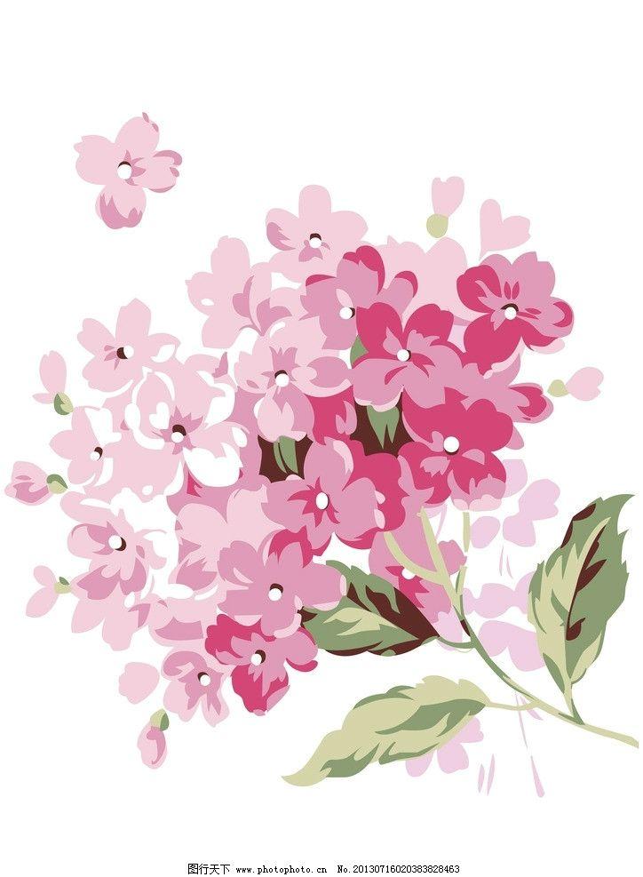 花卉 花 花朵 花纹 花草 植物 花瓣 花纹花边 底纹边框 矢量 ai