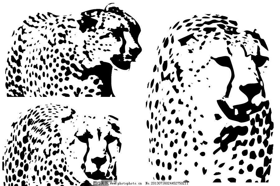 豹子的画法步骤