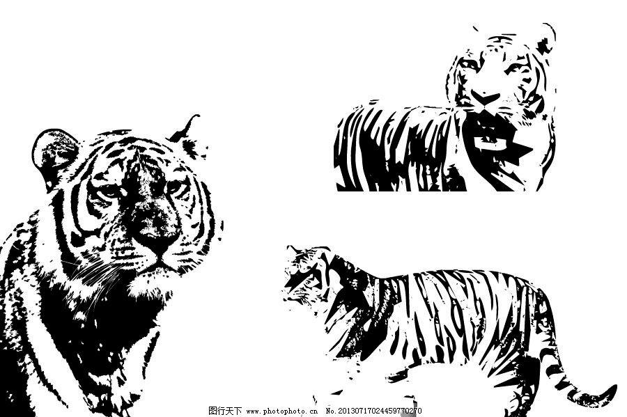 哺乳动物 老虎下山 孟虎下山 凶猛 野生动物 黑白虎 黑白画 生物世界