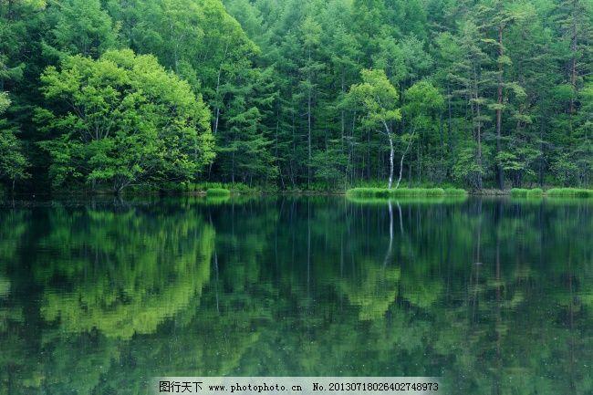 自然 旅游摄影 自然风景 四季风景 高清摄影图库 树木 森林 绿色 湖水