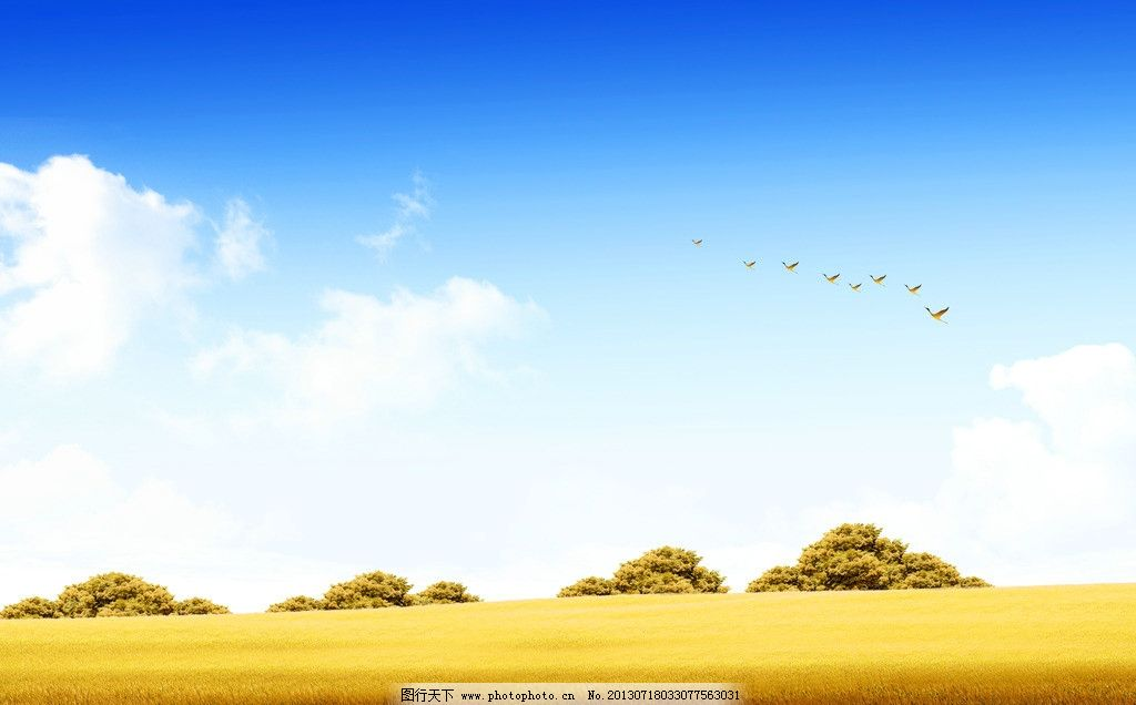 秋天背景 秋天风景 秋天景色 秋季海报 草地 落叶 蓝天 白云