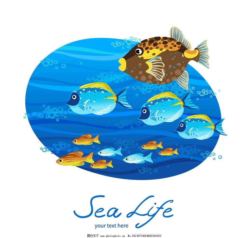 热带鱼 矢量鱼 海洋 蓝色 深海鱼图片