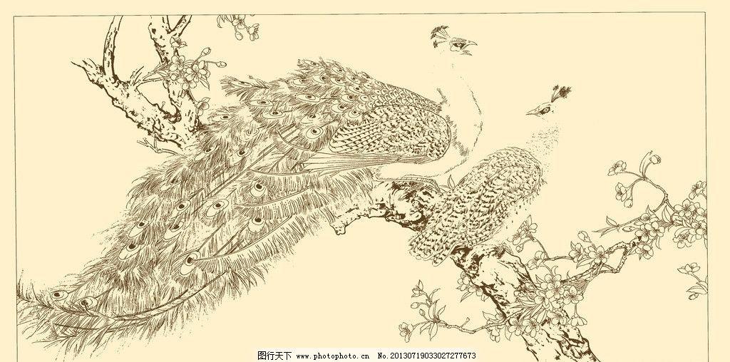 白描孔雀 线描 国画 中国画 禽鸟 动物 源文件