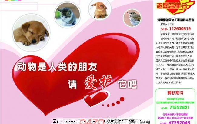 爱护动物图片_环保公益海报