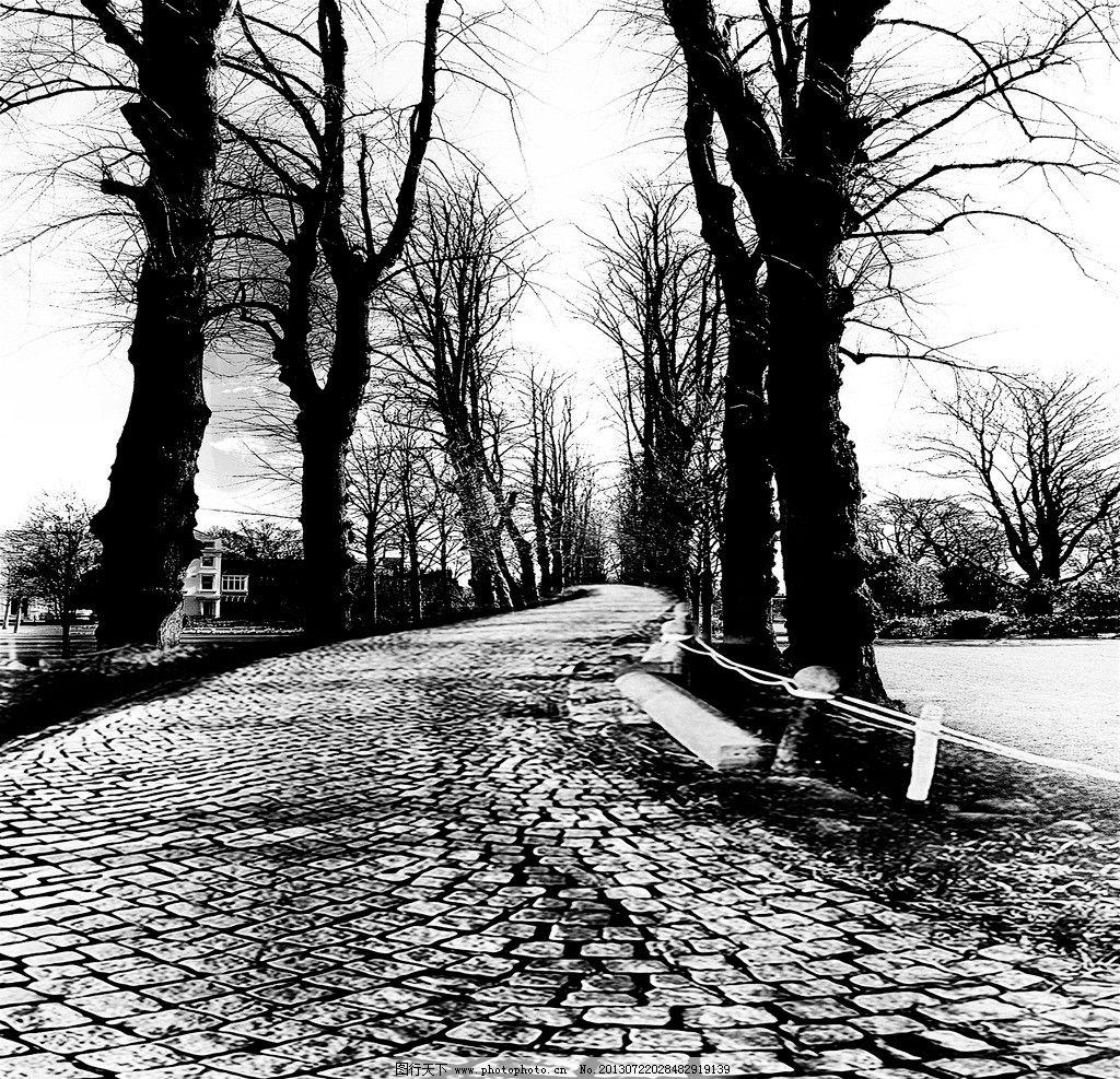 树木装饰画 装饰画 无框画 挂画 树 黑白风景 路 冬天 环境设计 设计