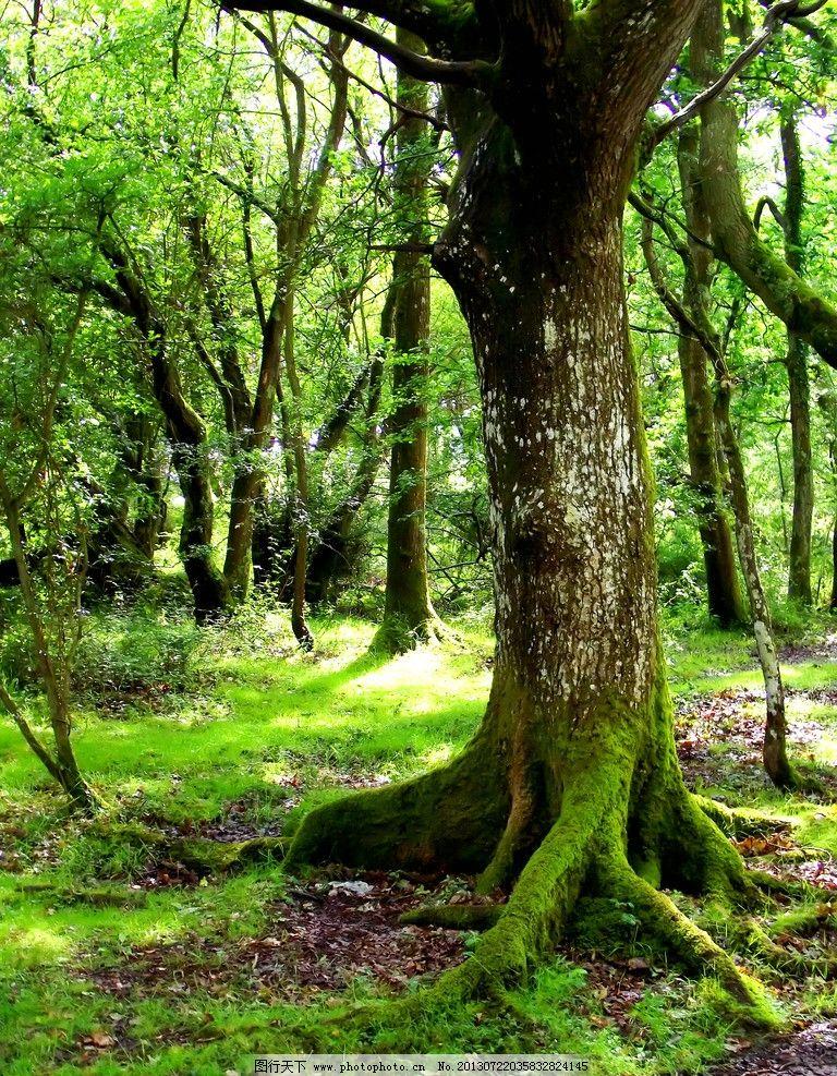 森林之神萨梯像雕塑