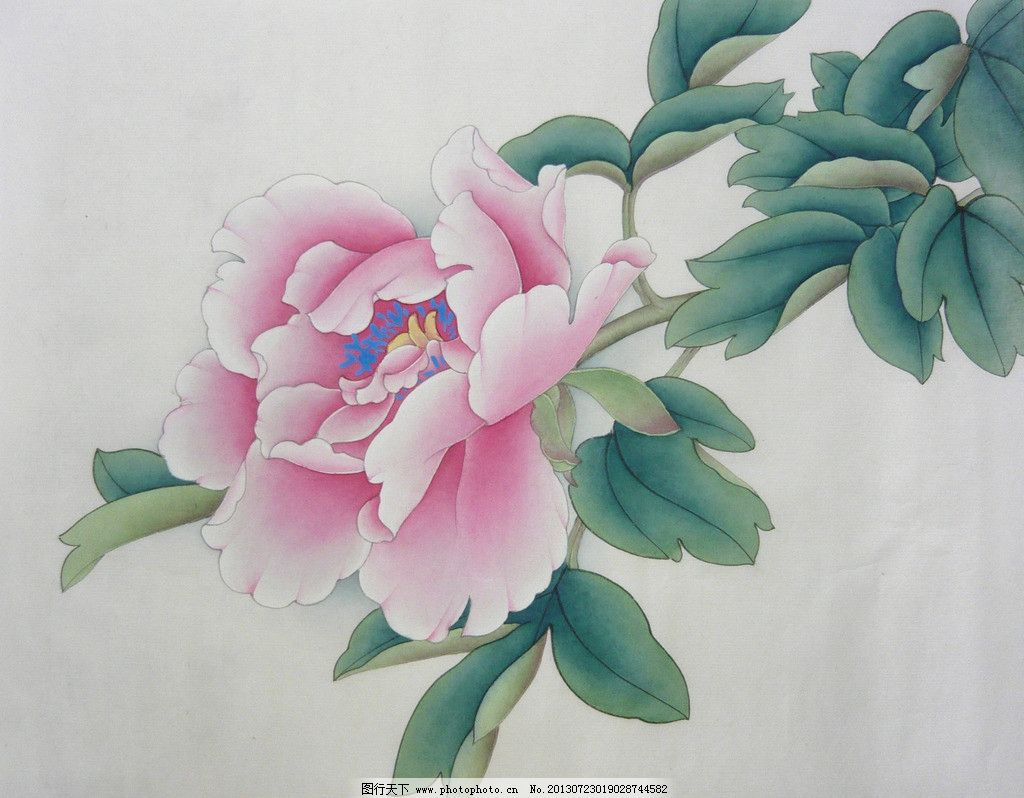 牡丹花 工笔画 水墨画 植物 花朵