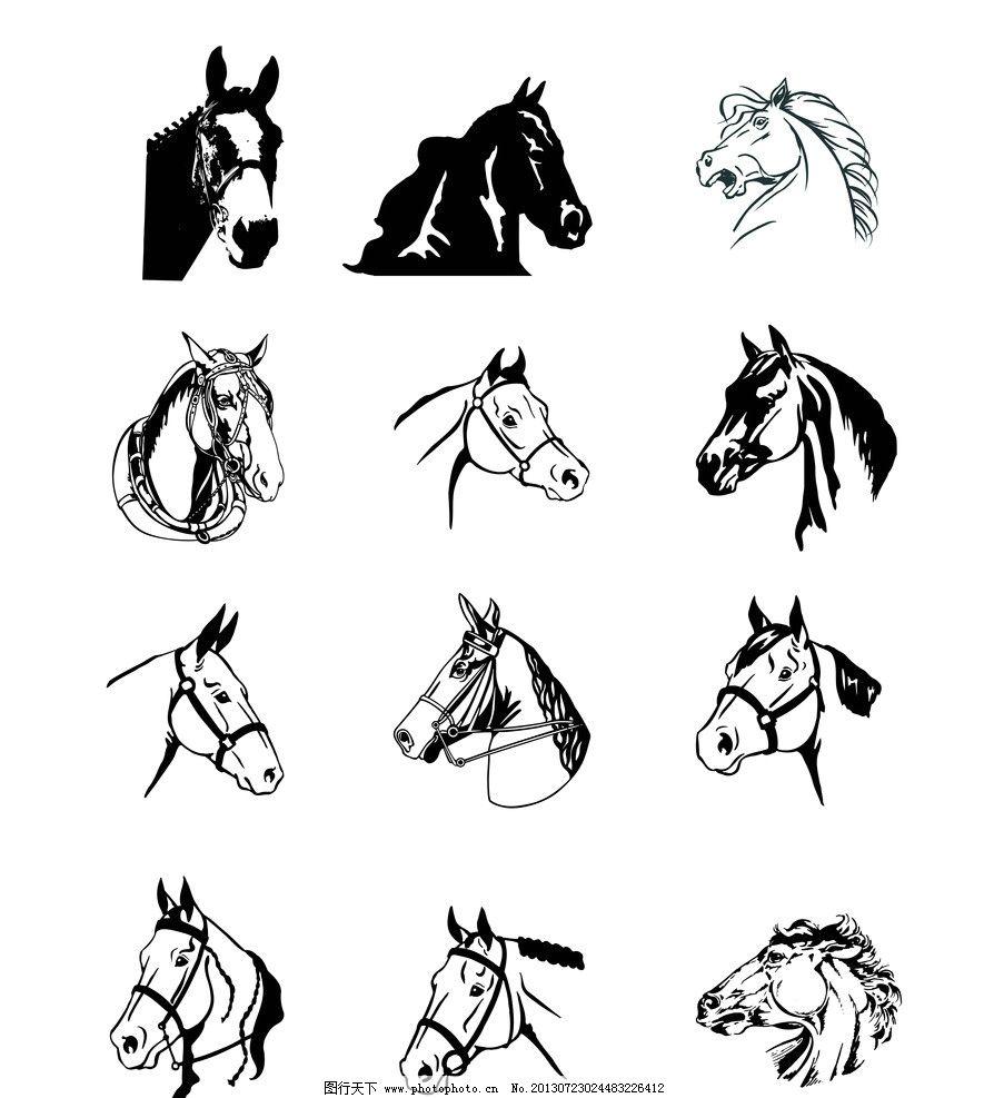 黑白马头 马头 马 动物 马矢量 动物矢量 动物头部 野生动物 生物世界