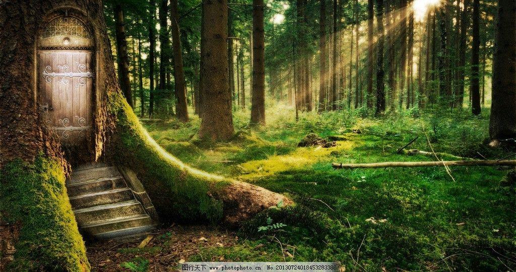 森林背景图图片_风景漫画