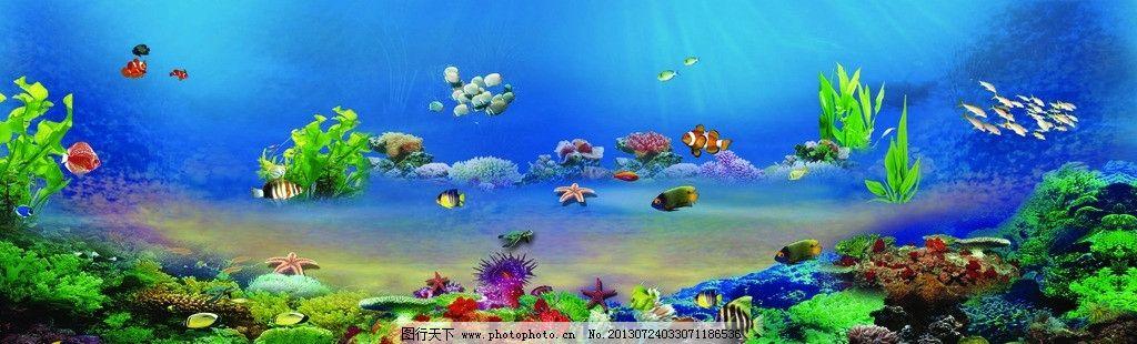 海底 风景图片