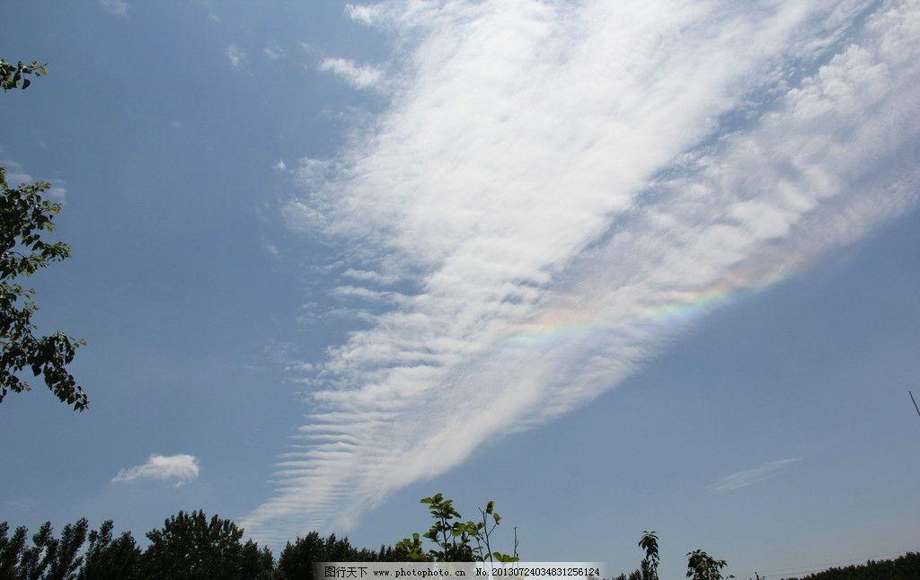 彩虹 蓝天 天空 白云 云朵 树 绿树 自然风景 自然景观 摄影 72dpi