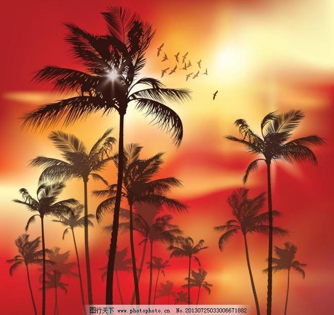 晚霞矢量 晚霞矢量图片免费下载 度假 海边 海滩 旅游 霞光 椰树