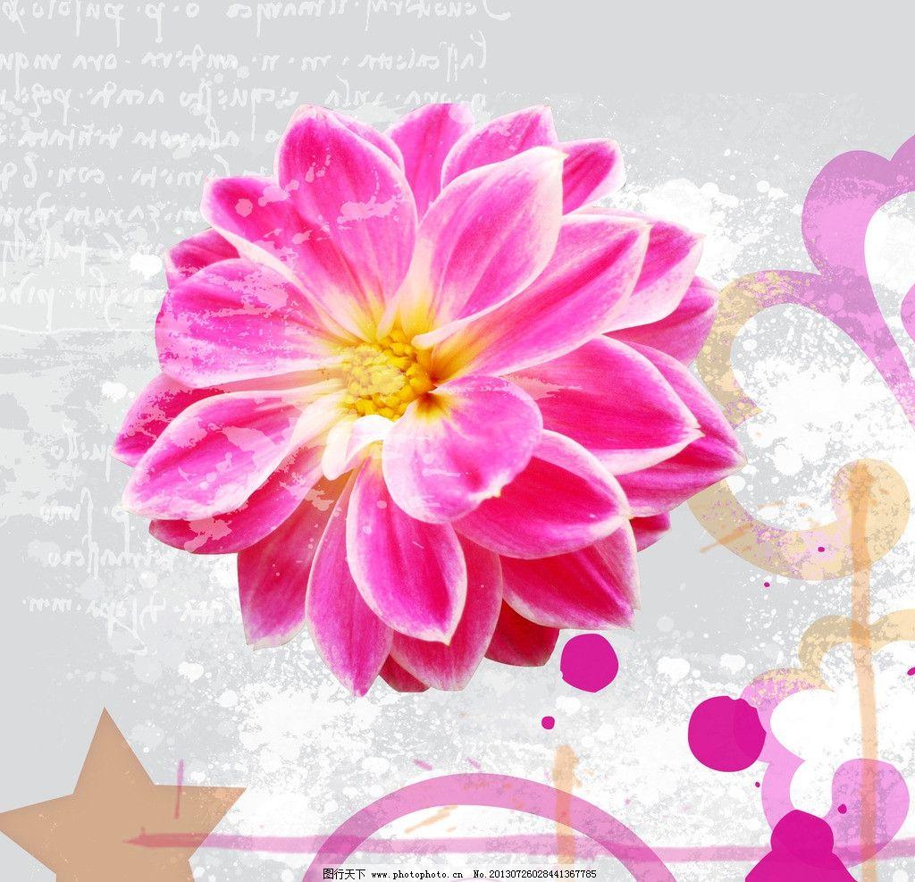 花朵装饰画图片