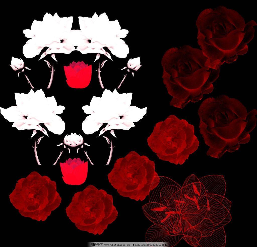 花朵图案 玫瑰花 白色 红色 荷花 黑色背景 图案 psd分层素材 源文件