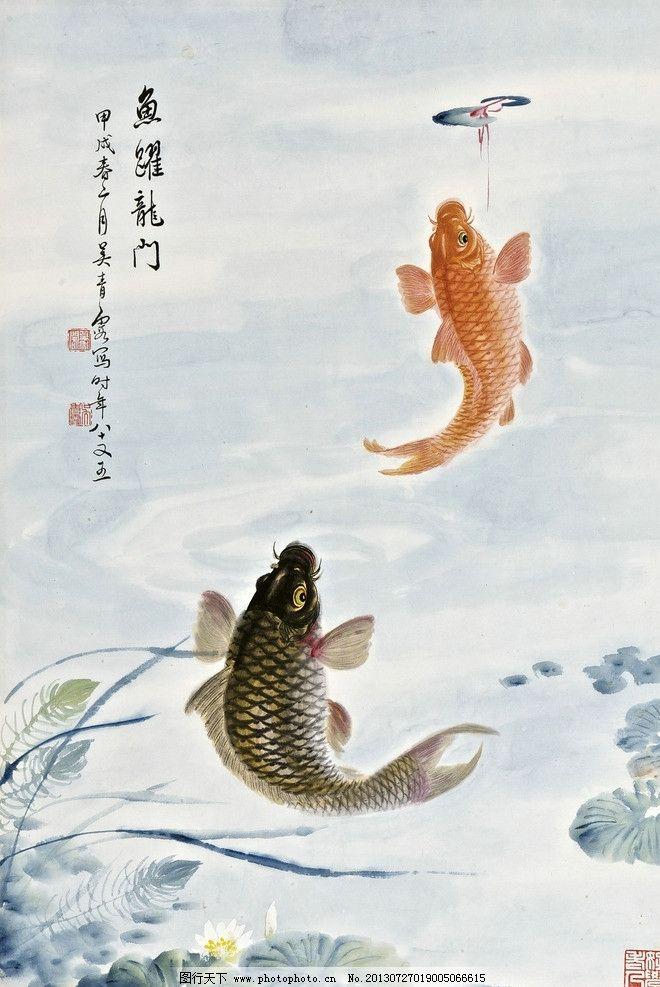 鲤鱼 江河 荷花