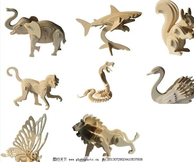 动物模型图片