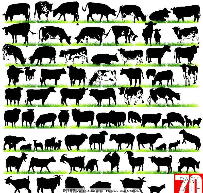 动物剪影 奶牛 羊 家畜 手绘 素描 卡通动物 野生动物 矢量