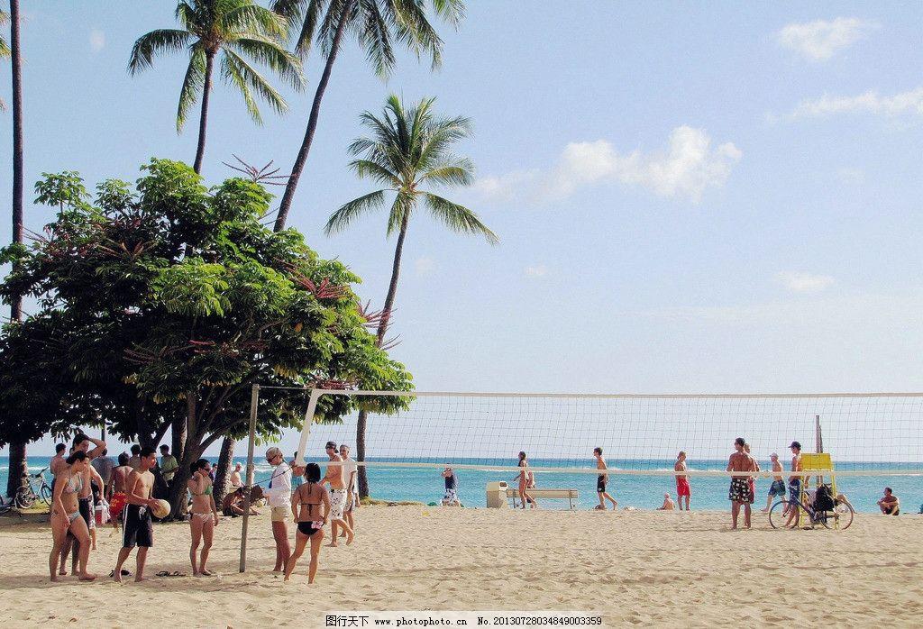 海岛 海边 旅游胜地 草坪 海滩 沙滩 休闲 避暑 椰树 高大 蓝天 蔚蓝