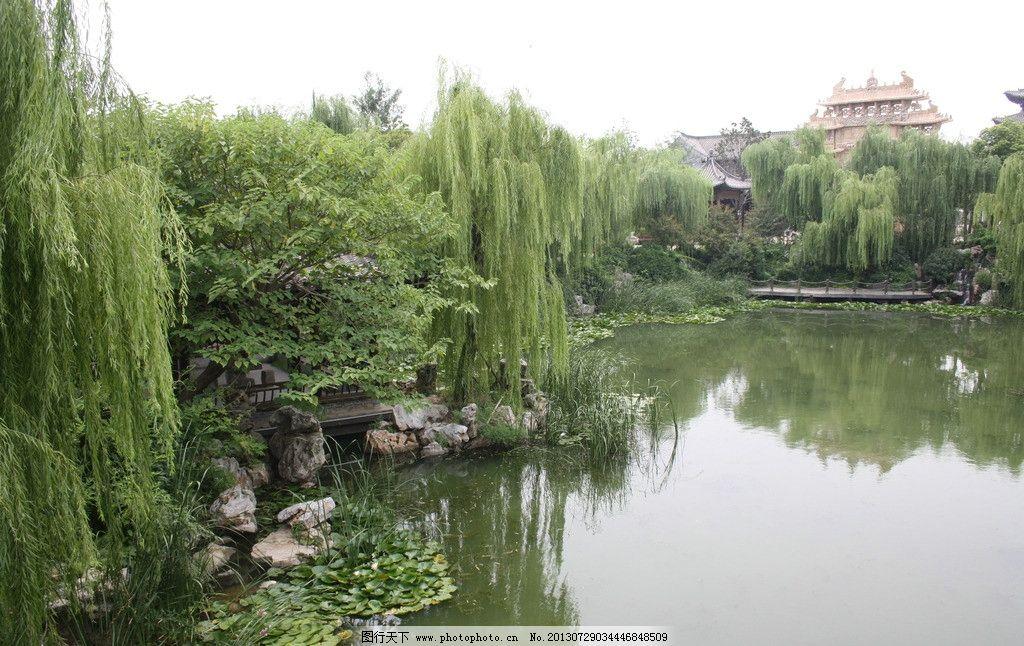 静静的湖水 荷花 柳树 湖面 亭子 安静 山水风景 自然景观 摄影 72dpi
