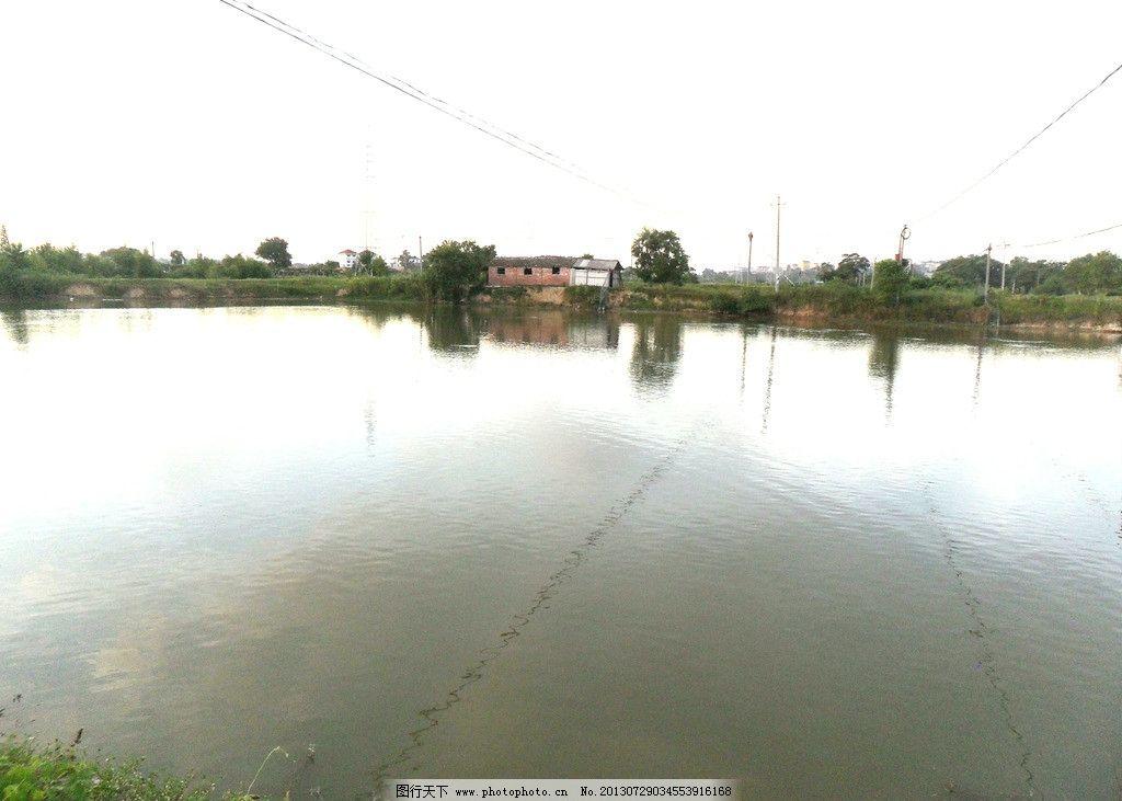鱼塘 水塘 农业 现代农业