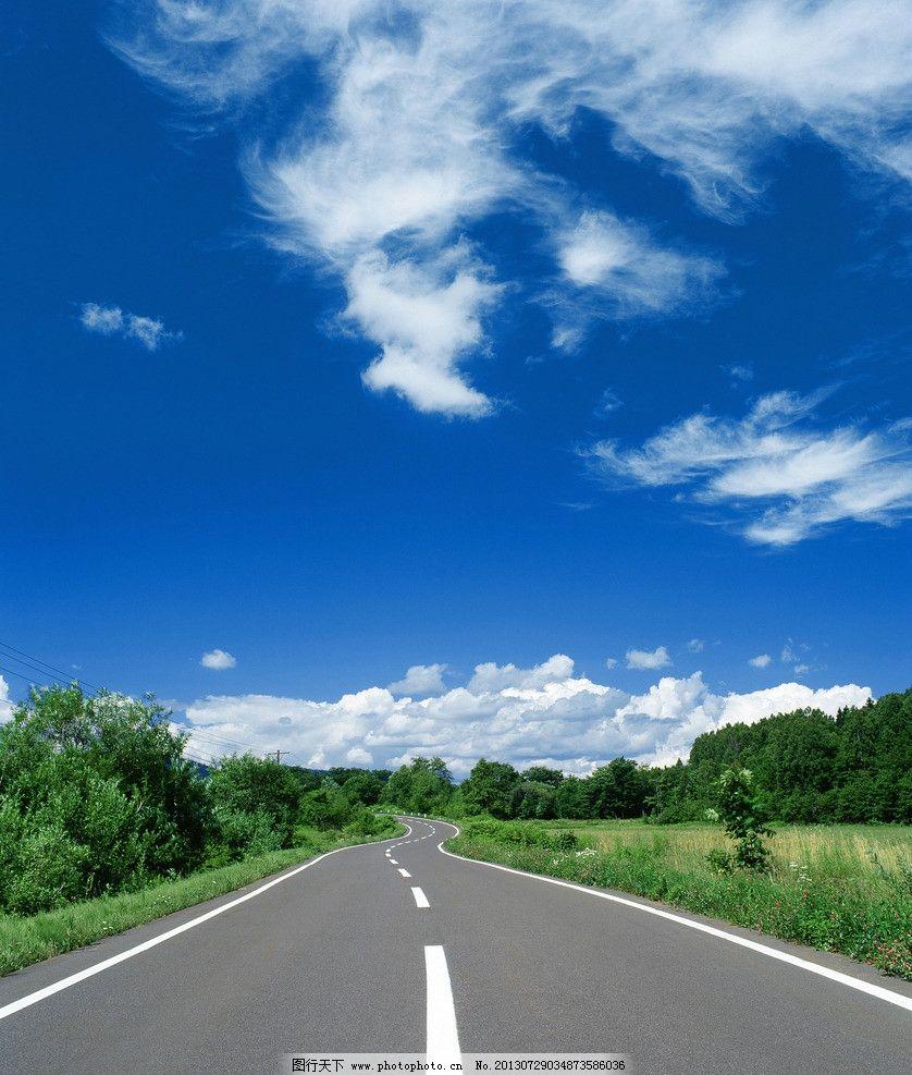 公路边草地与树林风景图片