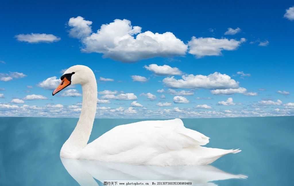 白云像动物的素描图片大全