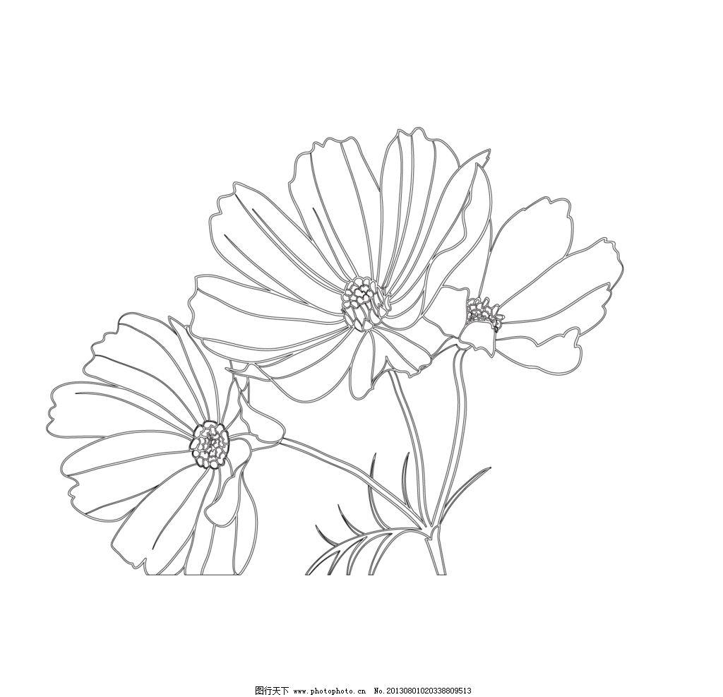 线描花卉 黑白 花纹 花朵 png 线描 花边花纹 底纹边框 设计 72dpi