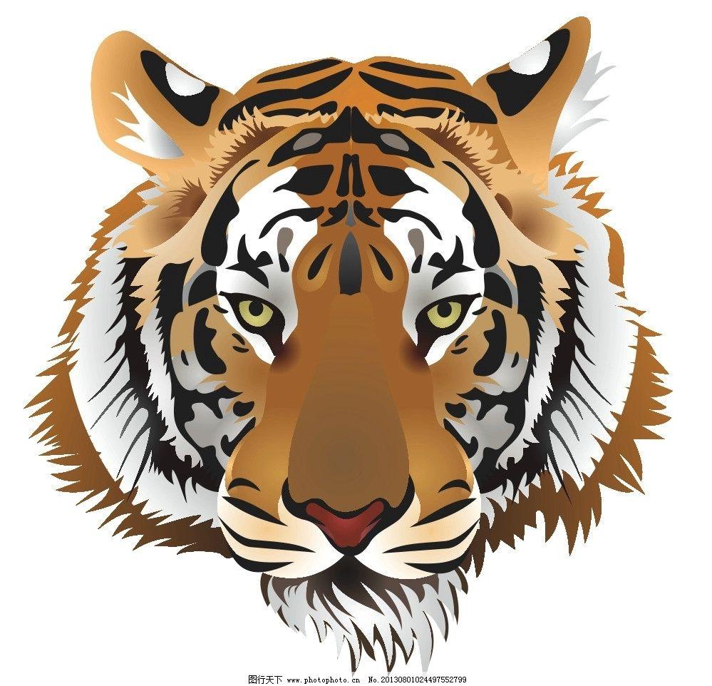 老虎头 野生老虎 虎头 虎头标志 逼真老虎 野生动物 生物世界 矢量