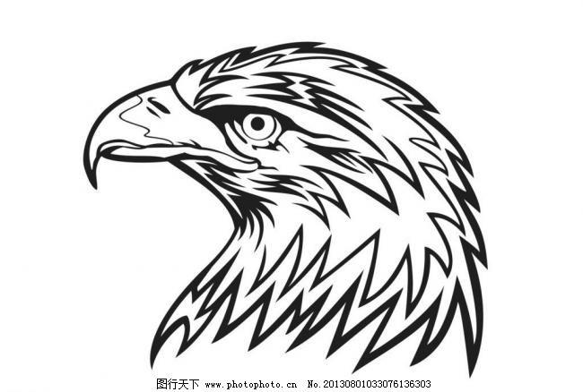 动画 动物 黑白 卡通 卡通动物 老鹰 漫画 鸟类 手绘老鹰矢量素材