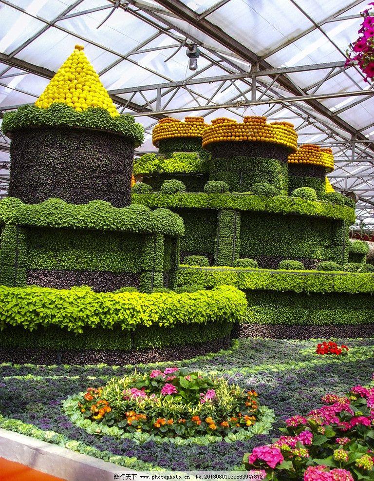 壁纸 成片种植 风景 植物 种植基地 桌面 768_987 竖版 竖屏 手机