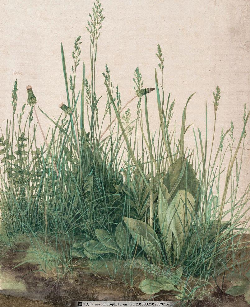 阿尔布雷特丢勒作品 油画 德国古典油画作品 文艺复兴时期 风景油画 一堆草 草地 植物 自然 草 景观艺术 草丛 阿尔贝蒂娜 杜勒 德国画家 北方文艺复兴 阿尔布雷特·丢勒作品 绘画书法 文化艺术 设计 14DPI JPG
