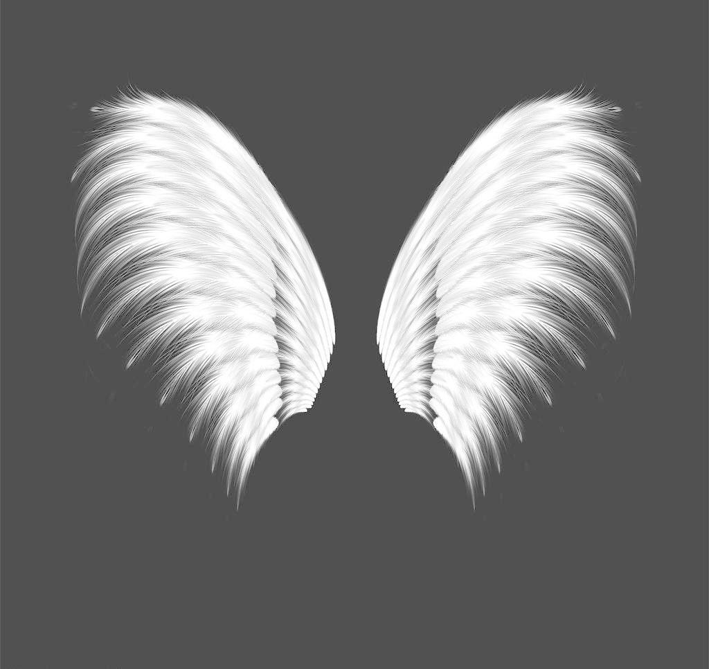 翅膀图片免费下载 72DPI JPG 翅膀 动漫 动漫动画 其他 设计 素材 天使 原创 翅膀设计素材 翅膀模板下载 翅膀 天使 原创 动漫 素材 其他 动漫动画 设计 72dpi jpg psd源文件 其他psd素材