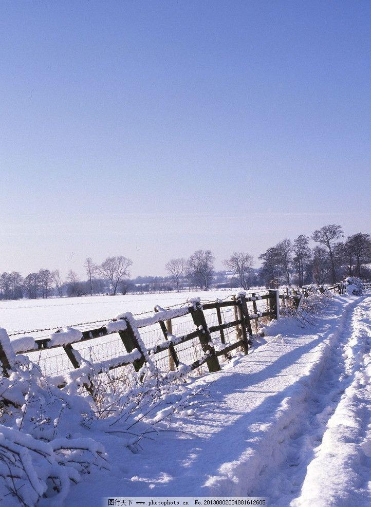 雪后农场 冬天 下雪 围栏 自然风景 自然景观 摄影