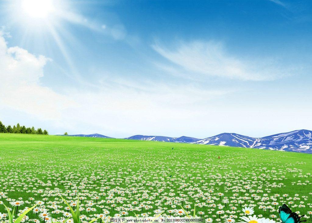 绿草地花朵风景