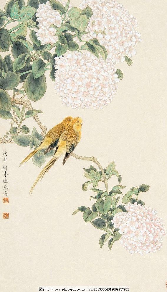 琼花鹦鹉图片
