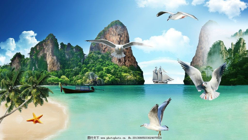 蓝天 海边 海鸥 海星 椰子树 小船 帆船 岛屿 自然景色 自然景观 海水